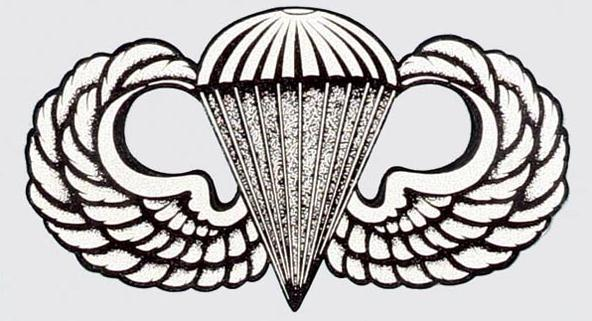 airborne wings picture